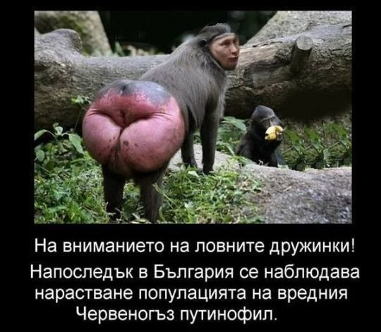 Bulgarians compile lists of pro-Putin katsaps