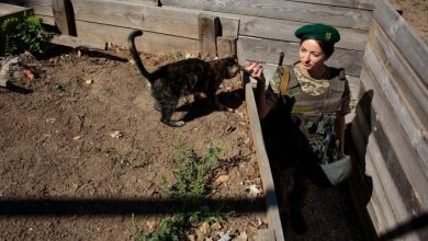 Photo of Inside the World of Ukraine's Women Warriors